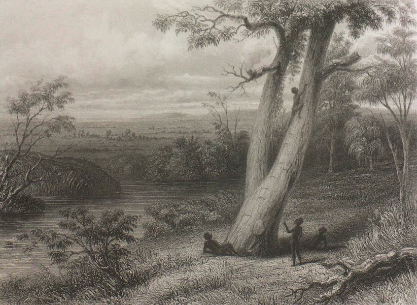 The Gwalor Plains