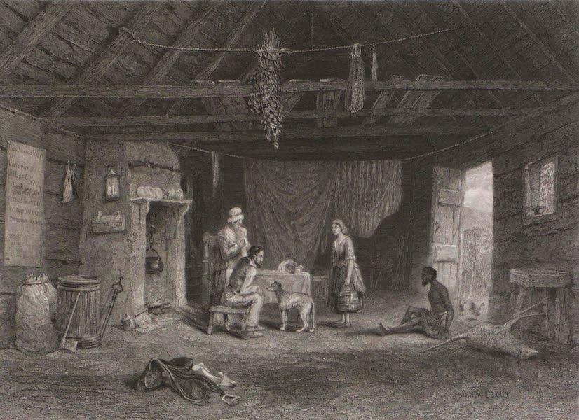 Australian Shepherd's Hut