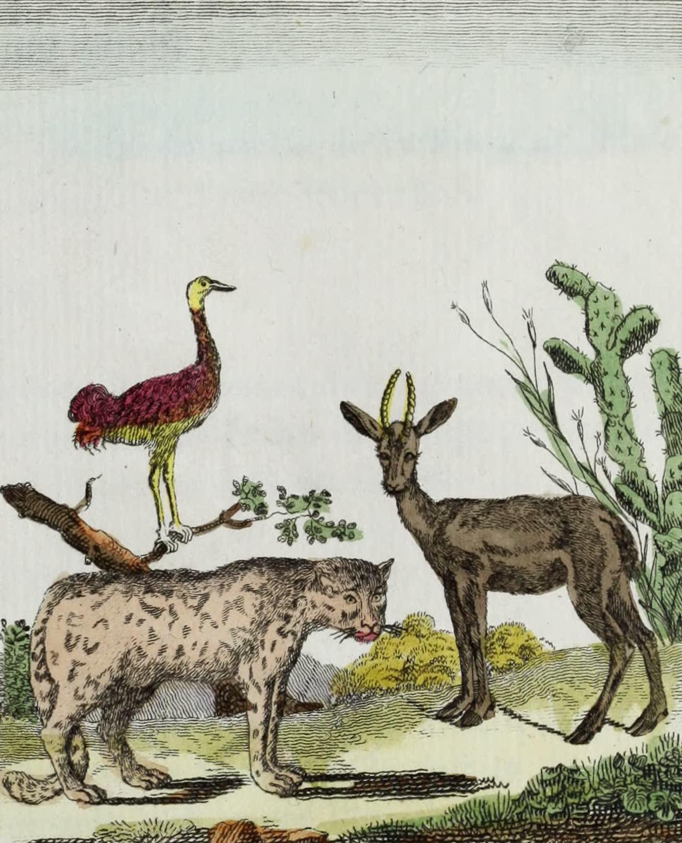 La Grue, l'Onee, la Gazelle