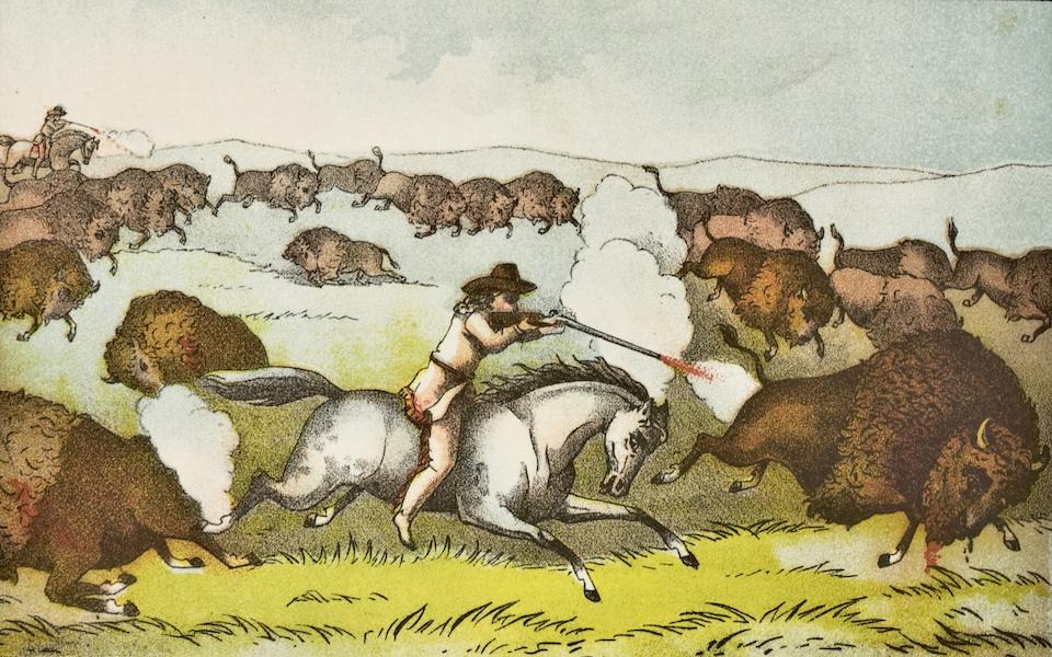 Buffalo Bill Wins the Championship