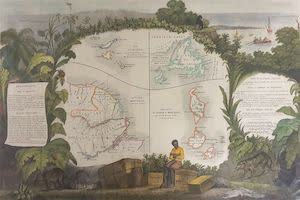 Collections - French Guiana
