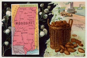 Collections - Mississippi